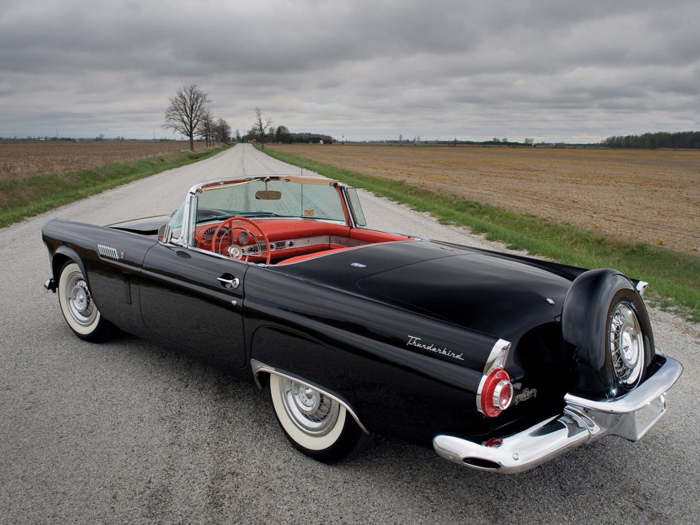 Ford Thunderbird: 10 фото